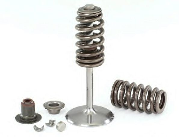 LS7 Valves & Springs
